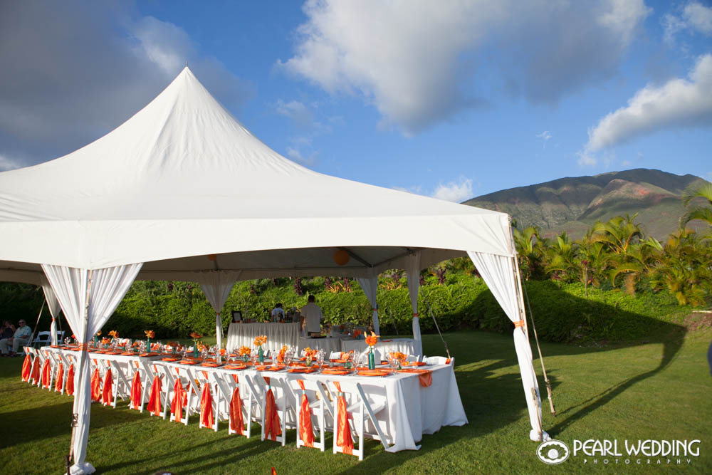 This set up really looks nice against the green back drop of the West Maui Mountains.